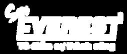 logo 20 nam & ev-04 - trang.png