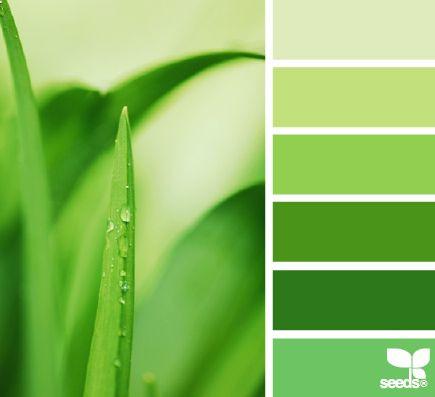 màu xanh thiên nhiên để mang đến sự thịnh vượng.