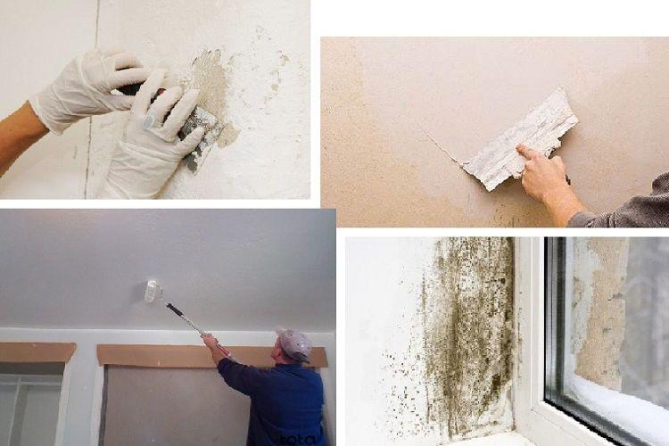 sơn nội thất sẽ không trang bị nhiều tính năng để chịu được nhiệt độ cao ở bên ngoài môi trường