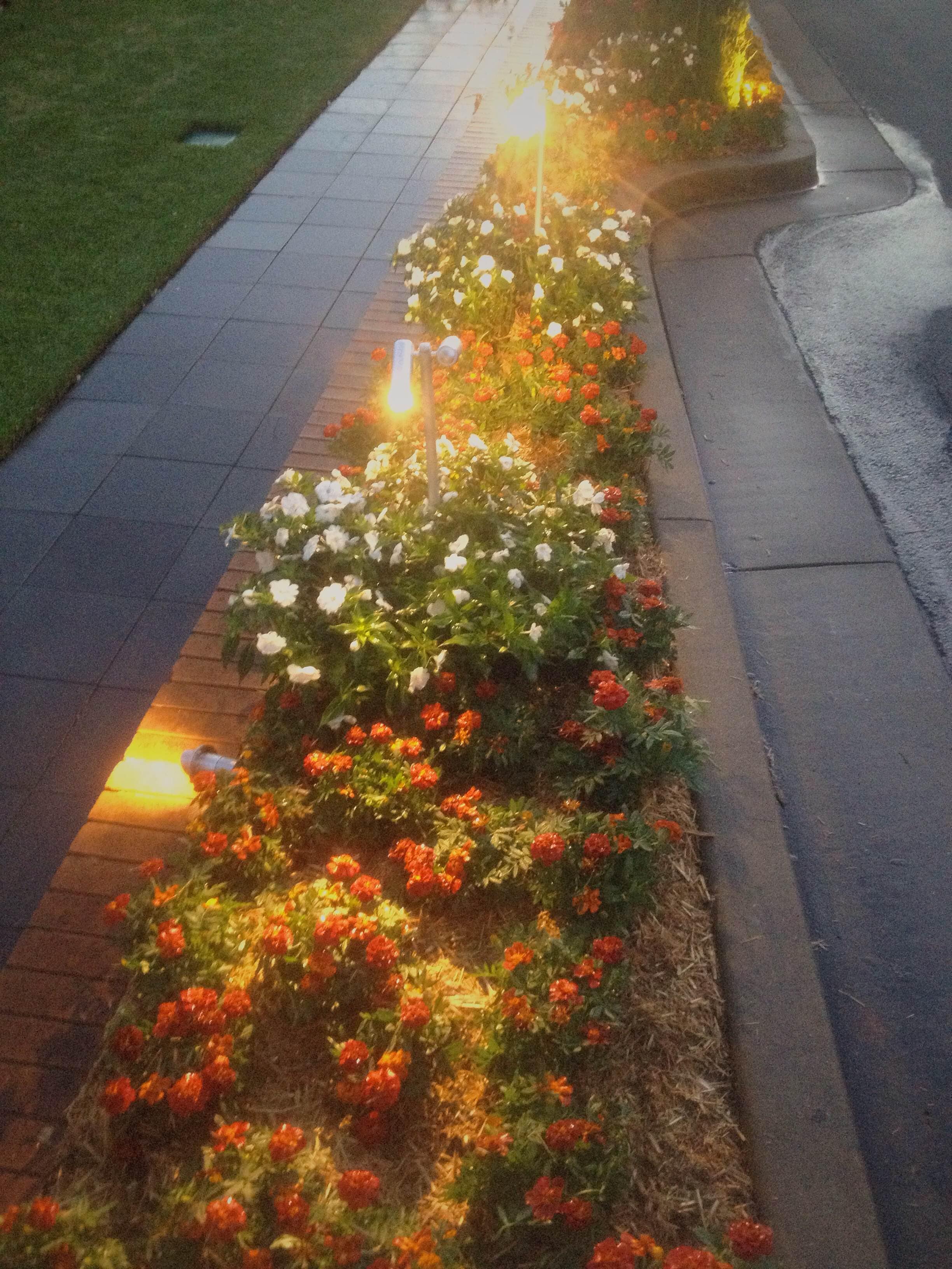 Bardwell Park Memorial Garden