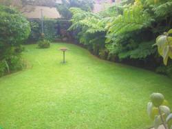 Garden Beds & Lawns