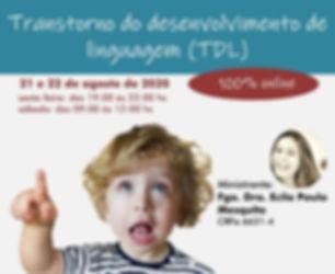 TDL.jpg