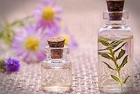 florais de bach.jpg