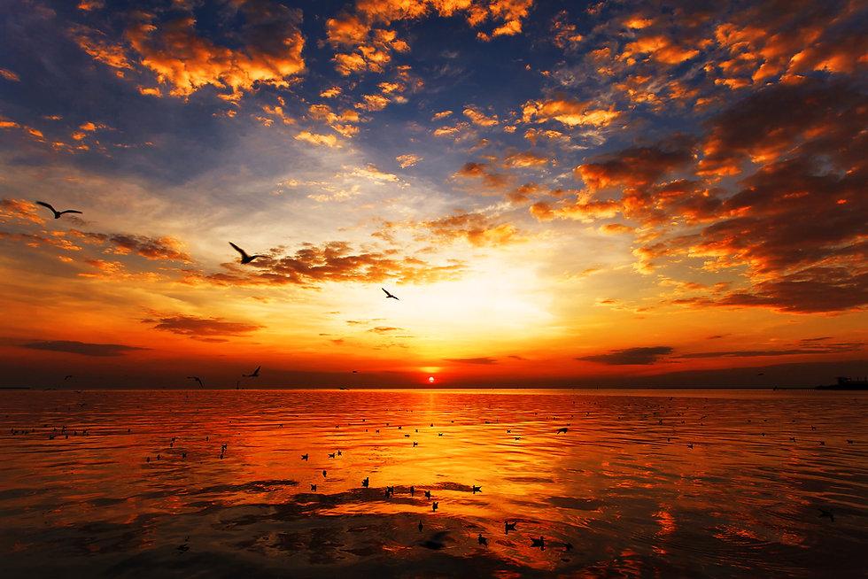 nascer do sol.jpg