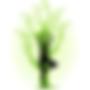 naturoplaisir-150x150.png