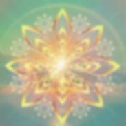 Image 2 website.jpg