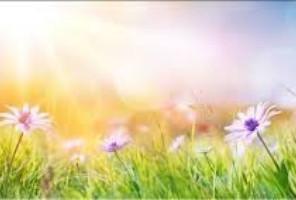 Le printemps se fête... un nouveau départ