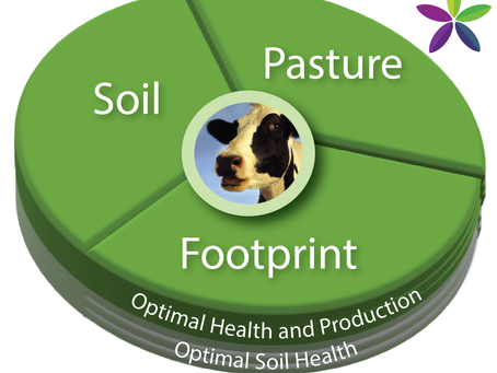Soil, Pasture or Livestock – What are we Actually Farming?