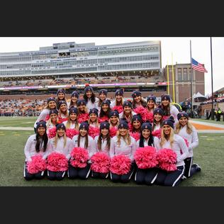 pink poms full teams.PNG