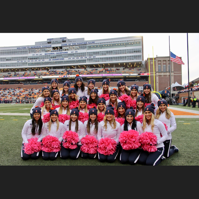 pink poms full teams.PNG
