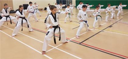 Junior-kids tae kwon do.png