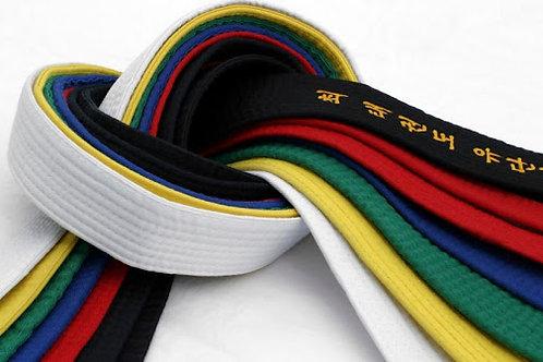 Coloured Belt Grading - June 13th/14th