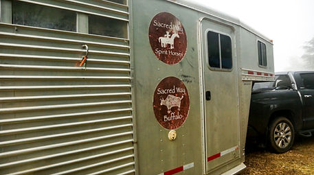 Sacred Way Sanctuary Spirit Horse & Buffalo medicine trailer