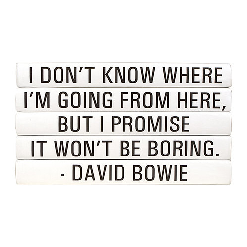 "5 Vol. David Bowie ""I Don't Know Where ..."" Quote"
