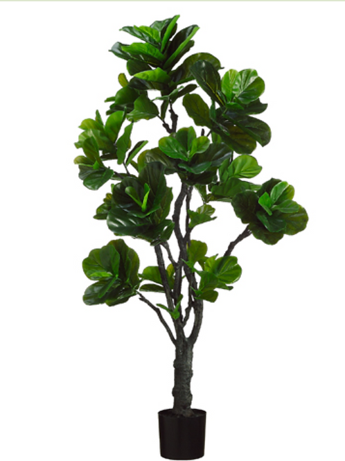 6' EVA Fiddle Plant with 144 Leaves in Black Plastic Pot Green