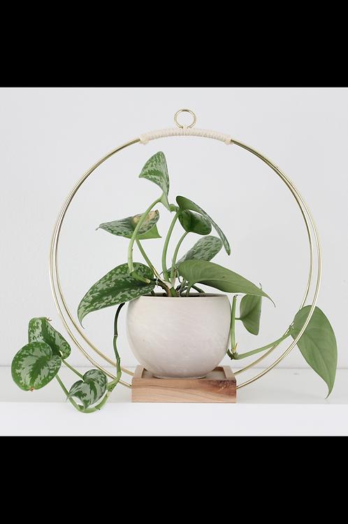 Braid & Wood Design Studio - Plant Hanger (Large)