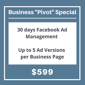 Facebook Ad Management