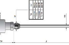 Temperature Sensor TP-581 PT100-2 ver.spec.CZAKI