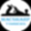 Macsharp Timbers Logo Icons White TP.png