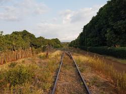 Frente a línea férrea, con una púa