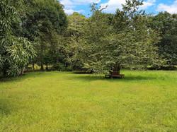 Lote Casita del Árbol (1)