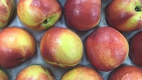 Nectarines, Figs, Medlars & Brussels Stalks