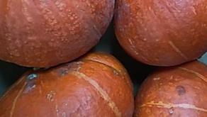Onion Squash, Okra & Figs