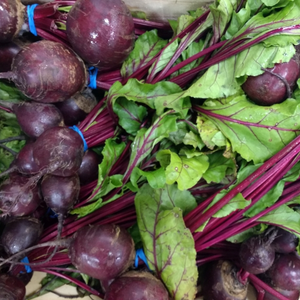 Bunched Beetroots