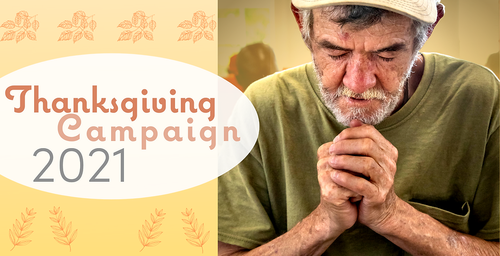 Thanksgiving Campaign banner(1).png