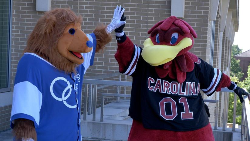 Ollie and Cocky high 5-2.jpg