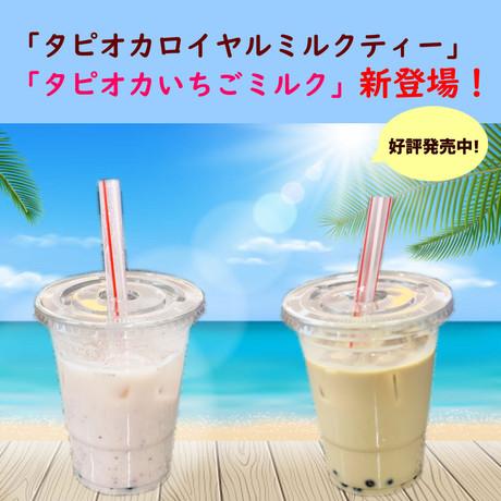 タピオカドリンク新発売!