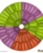 PLUe6NdETsirqg7Y9Hkf_Cannabinoid-Wheel-(