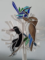 Aussy Birds 1.jpg