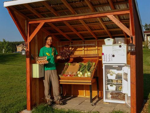 kiosque de légumes à la ferme, payer dans la boîte, confiance