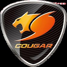 Taoyuan_Cougar_E-Sportlogo_square.png