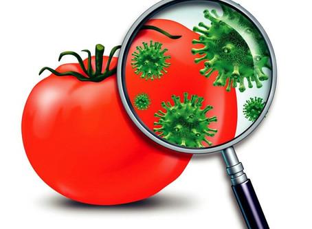 O novo coronavírus pode ser transmitido por alimentos?