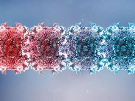 As variantes do novo Coronavírus