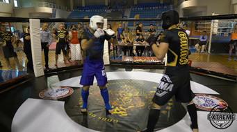 MMA Fights