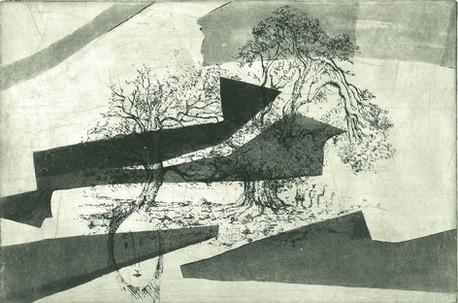 樹木の夢(鋭利な抽象)