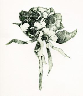 花影 「一篇の詩が届けられる」