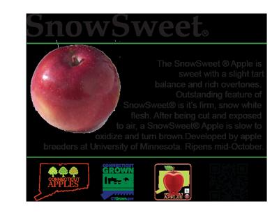 SnowSweet