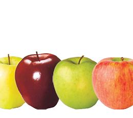 CT apples varieties