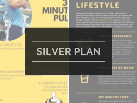 Silver Plan Weekly workouts/ Wellness tips [Wk of 04/25/2021]