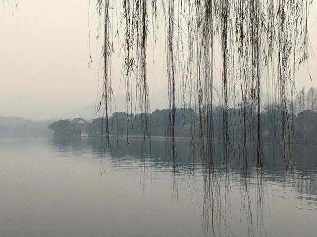 假装回了趟国度了个假。17年1月1号早晨的 #杭州 #西湖