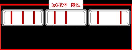 陽性図.png