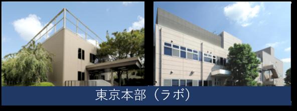 MST 分析センター