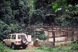 Limbo Hunt Club in 1983