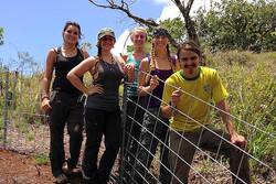 VINE crew volunteering in the field