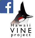 Hawaii VINE Facebook logo