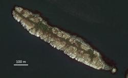 Satellite image of Mandarte Island
